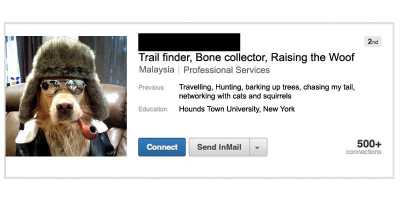 Inappropriate LinkedIn Profile Headline